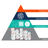 Climbing the steps of the Data-Information-Knowledge-Wisdom Pyramid